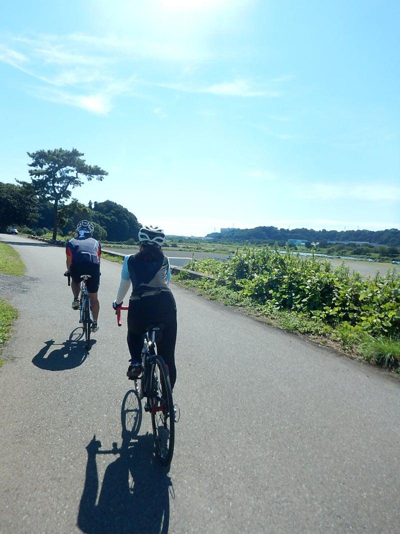 相模 川 サイクリング