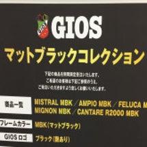 GIOSの限定カラー…