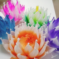 紙でつくる蓮の花のランプワークショップの記事に添付されている画像