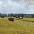 稲刈りは始まりました