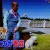 「志村どうぶつ園」青森編をみて大興奮!の画像