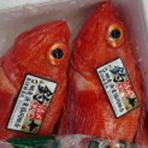 北のお魚 その1