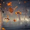 ルーツオータム3大イベント 千歳市 口コミ 1位 美容室 ルーツの画像