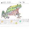 【たくみ大図鑑145】297 ススガエル、298 ポタモガーレの画像