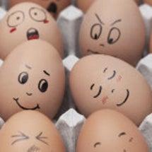 卵は完全栄養!