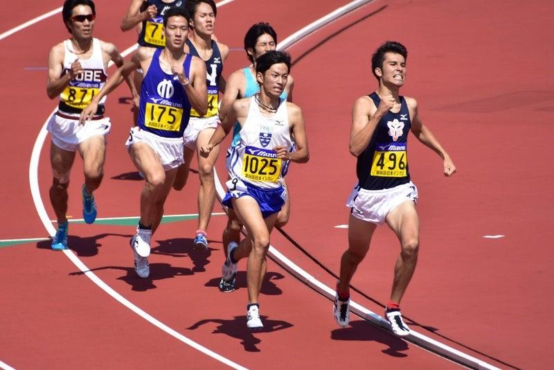 800mの1週間の練習メニューを考...