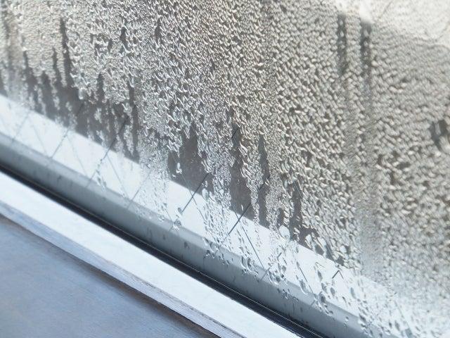 内窓 玄関ドア 理由