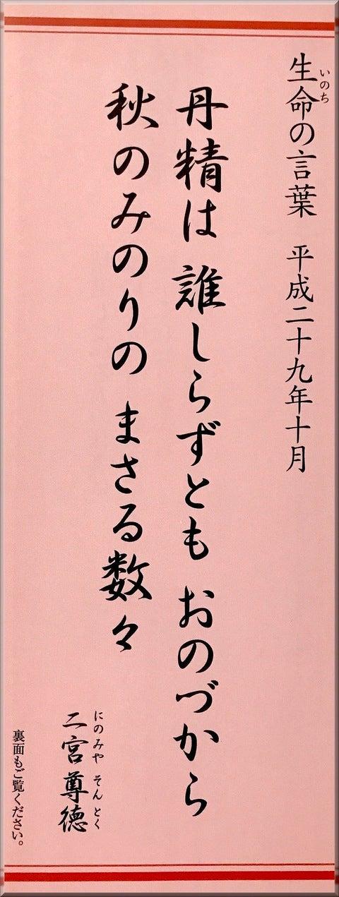生命の言葉 神社仏閣 寺社めぐり ご朱印 おみくじ