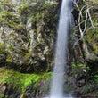 尾の谷滝2017春