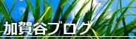 加賀谷ブログ