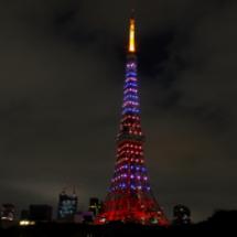 東京タワーライブ明日…