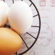 おまけ〜卵のギモンあ…