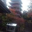 竹林寺(四国霊場第三…