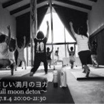 11/4(土)【やさ…