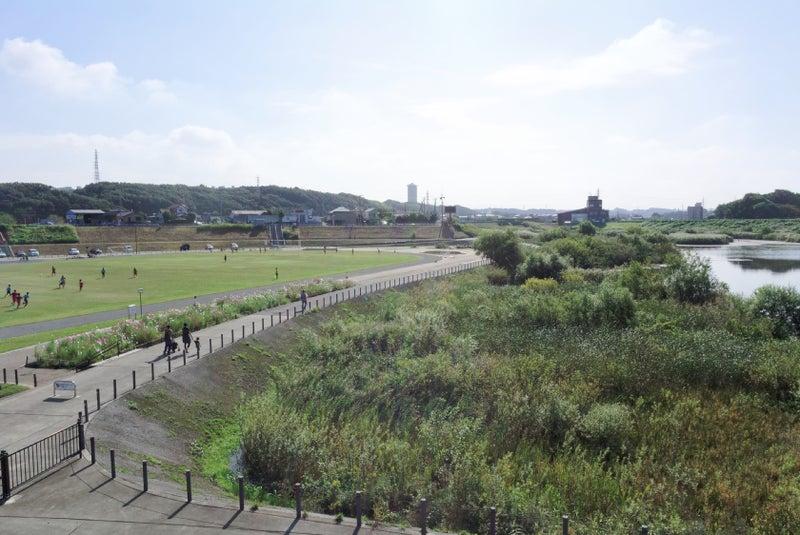 地 公園 遊水 境川