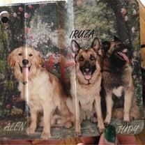 愛犬の写真でスマホケースはいかが~~~南国のマンゴと夕陽の記事に添付されている画像
