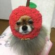 ハロウィン♪