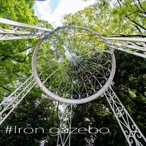 #Iron gazeboの画像