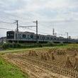 田んぼと小田急電車