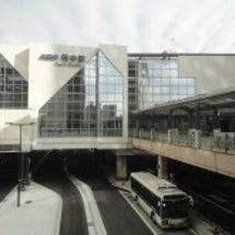 東京競馬場 ~ 毎日…