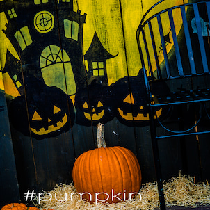 #pumpkinの画像