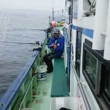 釧サバ釣りで釣行