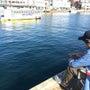 釣り初体験