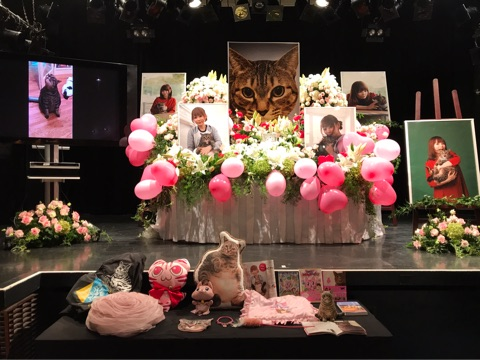 【芸能】中川翔子、愛猫・マミタスのお別れ会を報告 写真と共に思いを綴る