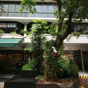 【徹底紹介】スラウォンの タンタワン ホテル はまだまだ使える老舗の穴場ホテルだった。の画像