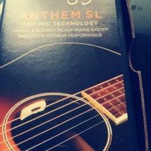 Anthem SL