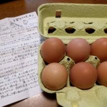 ぽからの卵が入荷しま…