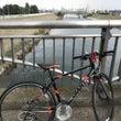 芝川サイクリングロー…