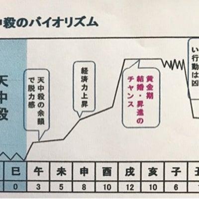 【辰巳天中殺】グループの特徴 2019年は黄金期2年目!の記事に添付されている画像