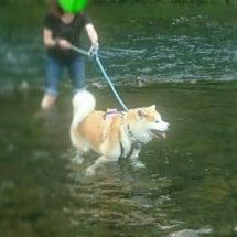 夏の思い出・水遊び