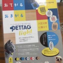 【PETPLEX日吉…