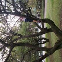 花島公園で虫とり!!