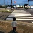 2歳〜信号機を見分け…