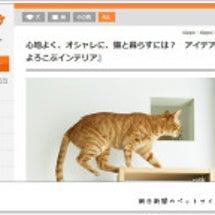 朝日新聞「sippo…