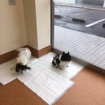 ホテル☆10月16日…
