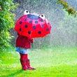 雨の日のゆらぎ ここ…
