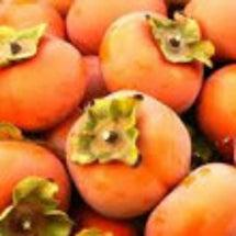 今が旬 〜 柿•Ca…