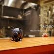 TACUBO (タク…