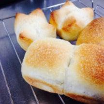 天然酵母 パン講座