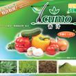 Icumo 青汁 ☆…
