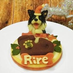 画像 ロビナのクリスマスケーキ、明日10/18(水)お昼、正午から発売開始!! の記事より 1つ目