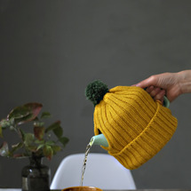 ★DAISOニット帽…