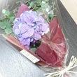 秋に紫陽花