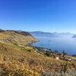 季節を感じて、スイス…