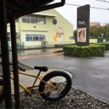 雨、雨、雨ですが!