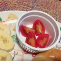 銚子トマト〜